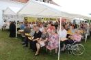 Pfarrgemeindefest_6